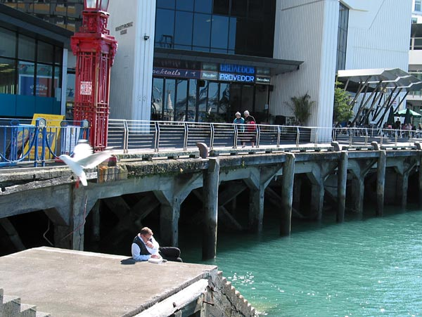 Relaxing by the sea, Auckland, New Zealand